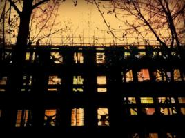 Призрак реновации