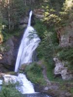 лес горы водопад