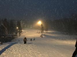 Зимняя ночь в Сибири