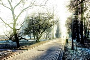 Мороз и солнце ...