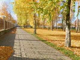 Парк осенью.