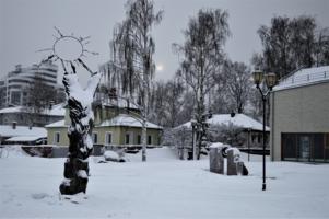 Холодный Петрозаводск
