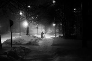 в городе Снежном