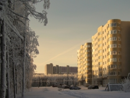 Морозный город