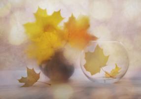 Осенний мотивчик