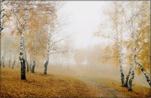 Просто осень...