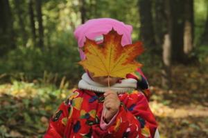 Осенние прятки
