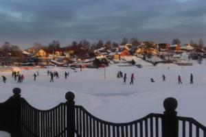 Зимний пруд