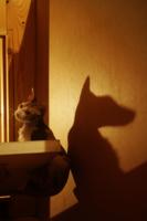 Кот Баскервилей...