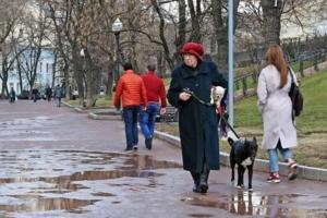 Прогулка по бульвару