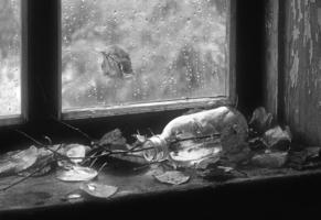 О чем плачет осень