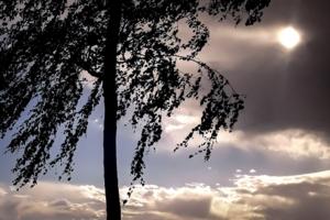 Уж небо осенью дышало ...