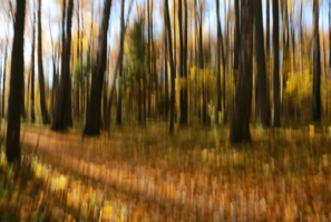 Нарисованная осень