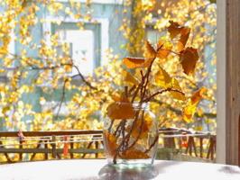 Открыть окно и впустить осень в