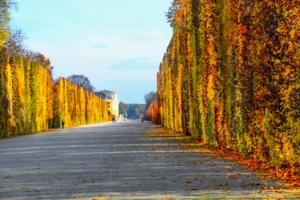 Венский парк