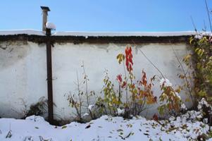 зима - невежливая гостья