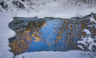 Зеркало для осени