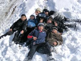 По свежему снегу