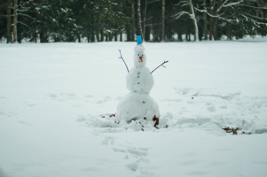Из снега