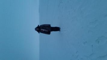 Бескрайняя снежная пустыня.