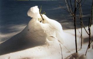 В снежной шубке