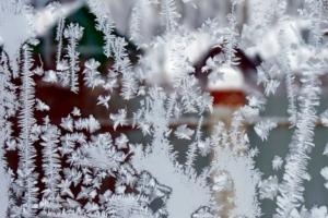 Волшебный мир деда Мороза.