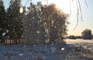 Падал прошлогодний снег...
