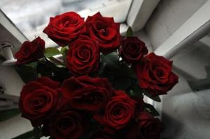 ..перед грозой так пахнут розы..