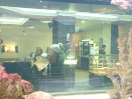 Люди и рыбы