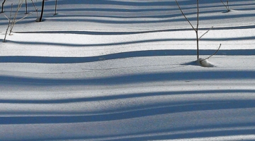 Зима в полосочку