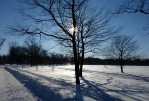 Иероглифы зимы