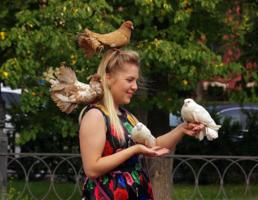 И четыре голубя