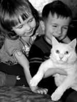 Наш любимый котик