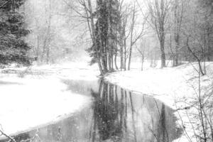 Тихо падал снег