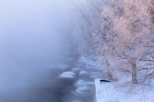 В мороз
