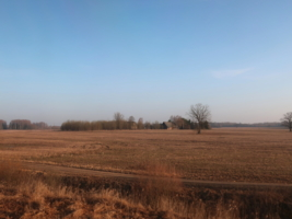 Среди полей.