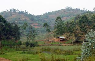 Дом у реки