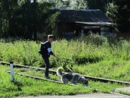 С верным другом на прогулке
