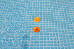 цвета лета на воде...