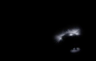 Ночные  снайперы