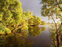 Летней вечер на плещеевом озере