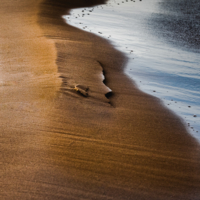 Портрет песчанного человека