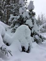 Ждун и снеговик