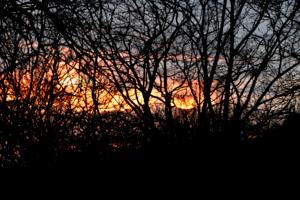 опстракция заката
