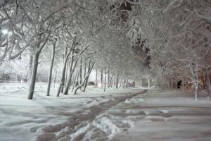 Пуховый снег