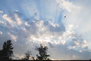 лучистые небеса
