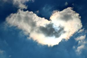 Истерзанное сердце