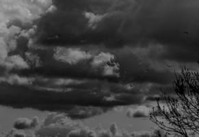 В облака