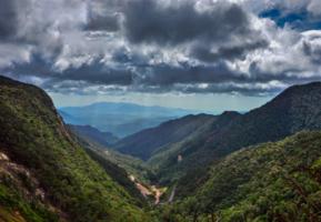 мое сердце в горах