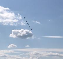 Самолеты, небеса...